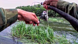 Что они творят Рыбалка на малой реке 2021 Открытие сезона на всплеск