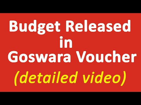 budget-released-||-budget-released-in-goswara-voucher-||-government-accounting-||-financial-account