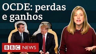 Apoio dos EUA: O que Brasil ganha e perde se entrar na OCDE