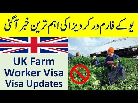 UK Farm worker Visa Latest Updates Under UK Seasonal Agriculture Pilot Program 2019.