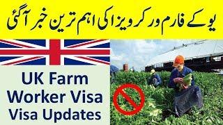 UK Farm worker Visa Latest Updates Under UK Seasonal Agriculture Pi...