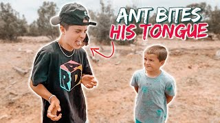 TEEN TRIES TO EAT A RED ANT | * INSTANT KARMA* GETS BIT ON THE TONGUE INSTEAD