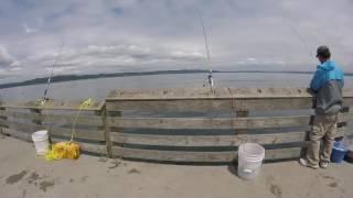 fishing dash point in washington state