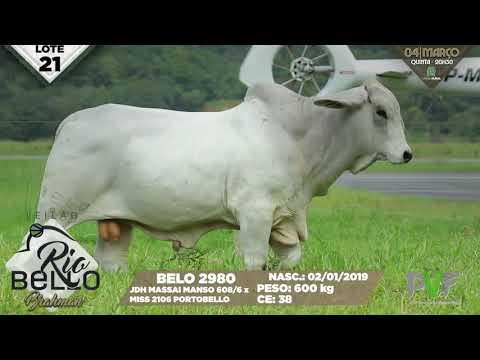 LOTE 21   BELO 2980