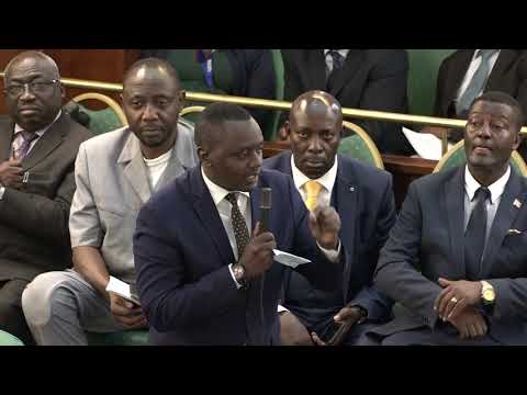 Bobi Wine Concerts: MP's attack Minister Jeje Odong on the floor of Parliament - Woman Cries