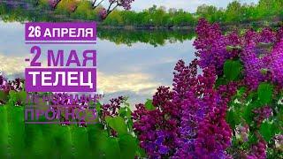 ✨ ТЕЛЕЦ ♉️ неделя 26 апреля-2 мая 2021/Таропрогноз/Ленорман прогноз