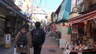 Japan Trip 2015 Tokyo Walking in Yanaka ginza  Shopping Street