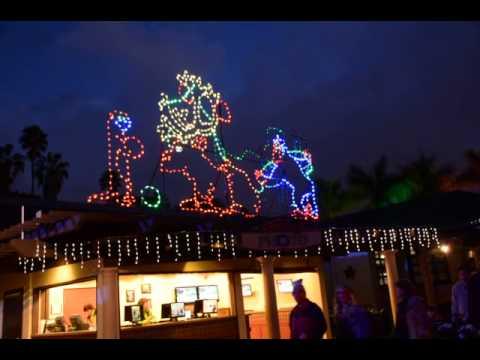 San Diego Christmas Lights.San Diego Zoo Christmas Lights