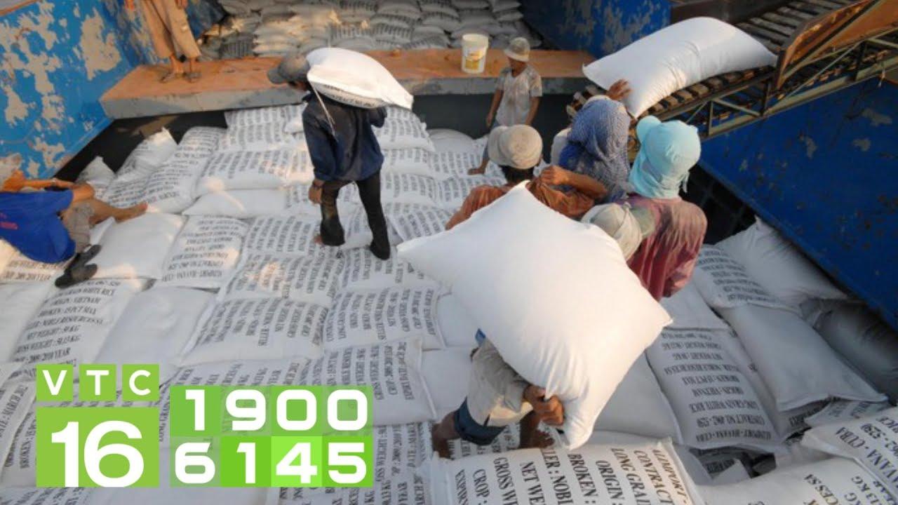Kêu cứu Chính phủ điều tra lợi ích nhóm trong xuất khẩu gạo | VTC16