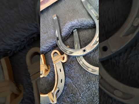 Horse Shoe Wall