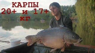 Карпы 20 и 17 турнир 2 2 на Ульяниках Рыбалка на карпа