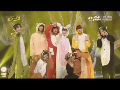 [HD] SF9 Roar animal onesie ver.  special stage
