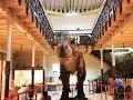 Egmore Museum   A quick glance 1080p HD   Chennai