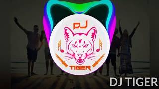 YE DOSTI HUM NAHI TODENGE - DJ ANK'S AND DJ SID | DJ TIGER