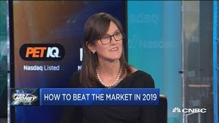 Tech stocks to beat the market: ARK Invest's CEO