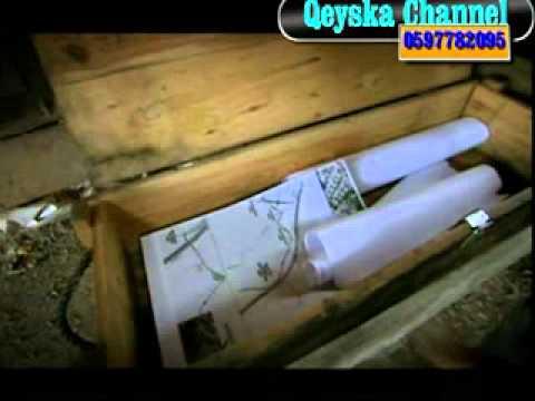 Wadi diab 1 qeyska channel WMV V9