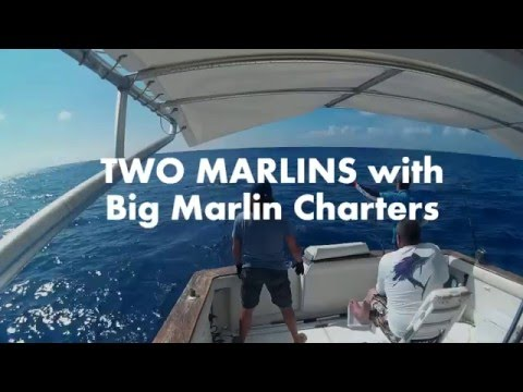 TWO White Marlins With Big Marlin Charters Punta Cana