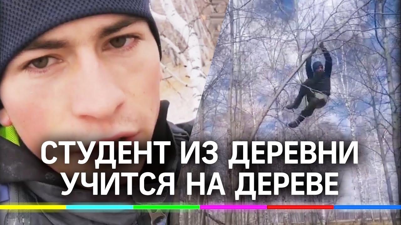 Омский студент учится на берёзе из-за плохого интернета. Ответ властей на  обращение с дерева удивил - YouTube