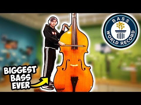Download I Played the BIGGEST BASS in the WORLD Record Mp4 baru
