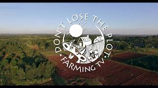 Don't Lose the Plot 1X13 FINALE: Who will be our farming hero?  (Reality Farming Competition)