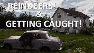 Urban Exploration: Is somebody in here!?, reindeers, old cars & hoarder stuff