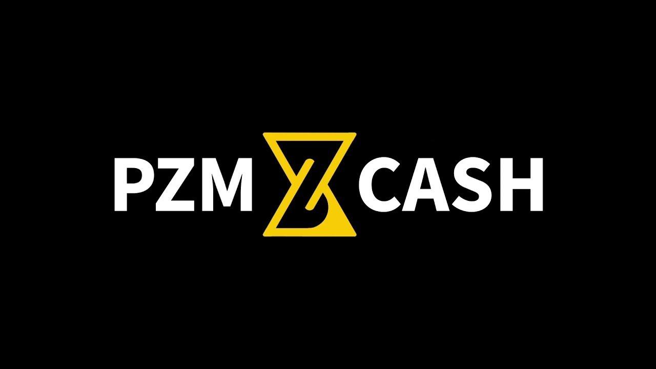 PZM Cash - Обзор уникального проекта