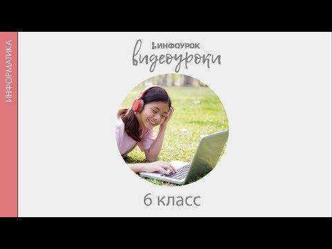 Видео Информатика 6 класс босова