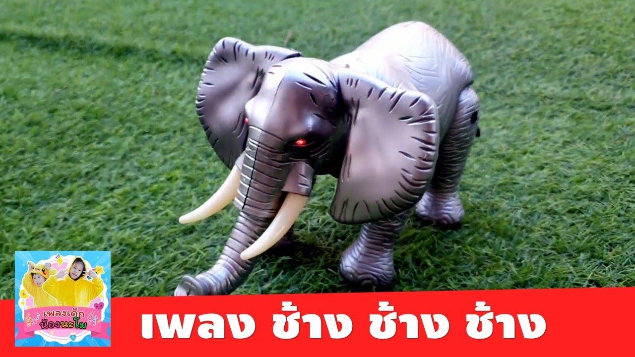 เพลง ช้าง ช้าง ช้าง น้องเคยเห็นช้างหรือเปล่า | MV รีวิวช้างของเล่น ใส่ถ่านเดินได้