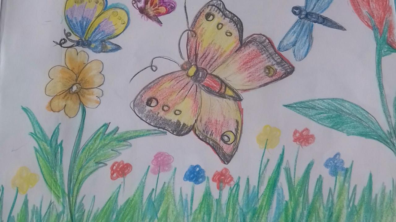 How To Draw Beautiful Butterflies In A Garden