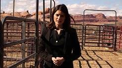 Navajo students thrive in Arizona veterinary sciences progam   Cronkite News