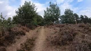 Herkenbosch Trail