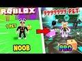 NOOB VS PRO W ROBLOX PET SIMULATOR | Vito vs Bella