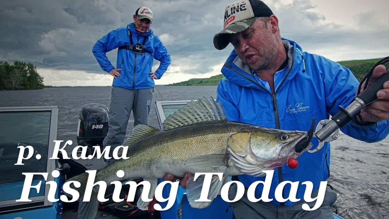 рыбалка на щуку на дне