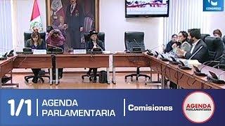 Sesión Comisión de la Mujer 1/1 (12/06/19)