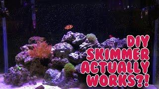 Super easy DIY protein skimmer that works!