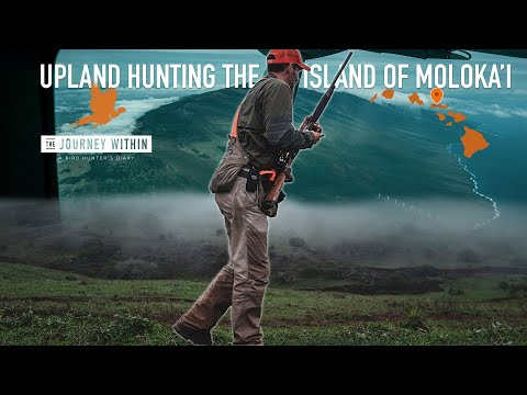 Upland Hunting Hawaii's Moloka'i Island: The Journey Within - A Bird Hunter's Diary   Mark Peterson