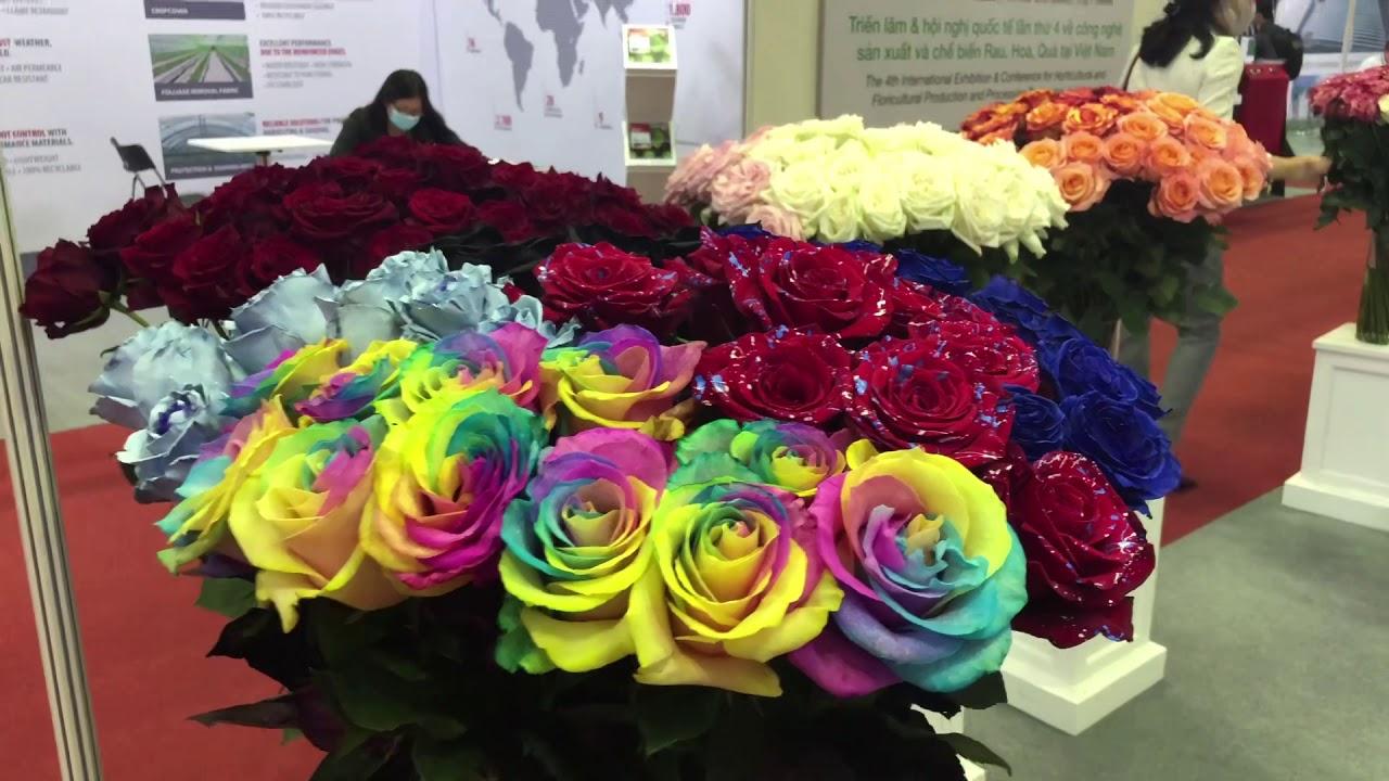 Tham quan triển lãm công nghệ sản xuất và chế biến hoa củ quả