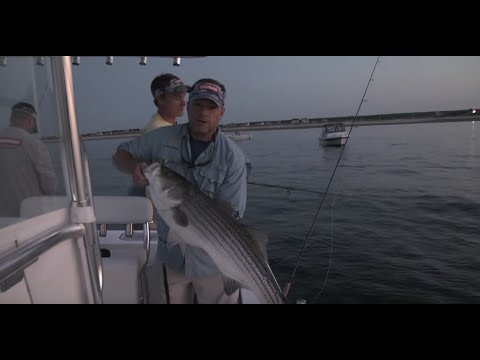 Eeling For Nighttime Stripers In Cape Cod Bay | S13 E4