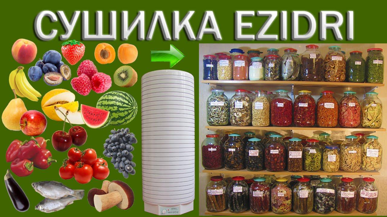 Сушилка для овощей и фруктов Mystery MDH-323 обзор, личный отзыв .