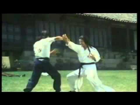HWang Jang Lee kicking