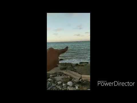 ULTIMA HORA METEORITO CAE EN EL AREA DE LOIZA PUERTO RICO,TESTIGOS DICEN QUE TEMBLO LA TIERRA