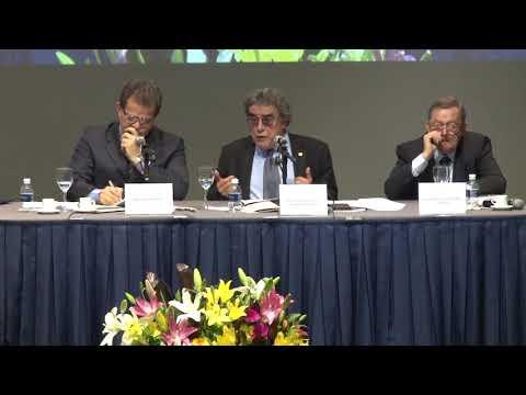 VIII Congresso Internacional de Direito do Trabalho da Academia Brasileira de Direito do Trabalho e VII Jornada Iberoamericana de Derecho del Trabajo y de la Seguridad Social - 2018 - Painel 9 - Aloysio Silva