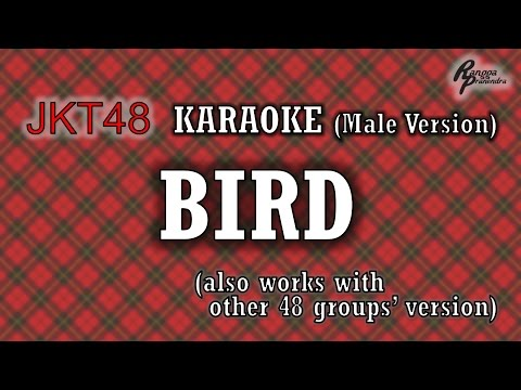 JKT48 - Bird KARAOKE (Male Version)