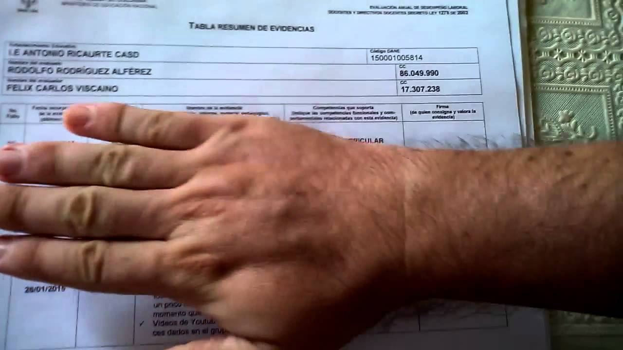 1) EVALUACIÓN DE DESEMPEÑO, FORMATO Y CARPETA DE EVIDENCIAS. - YouTube