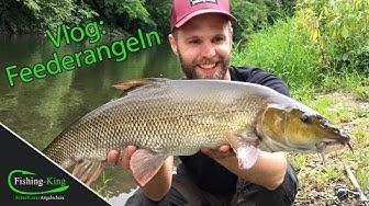 Vlog: Feederangeln auf Barbe | Fishing-King.de