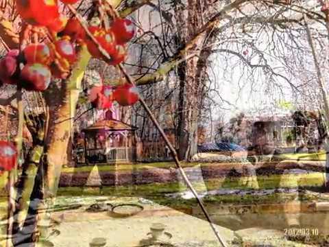 Garten Im Winter botanischer garten im winter braunschweig 2015