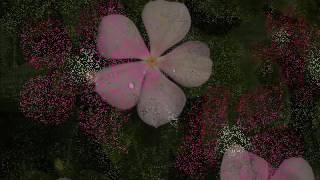 দীপ নিবে গেছে মম নিশীথসমীরে   -   প্রেম   -   মান্না দে