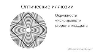 01  Информация  Информатика  Компьютер