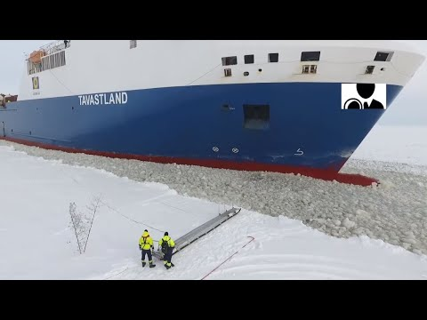 Pilot Steps onto Moving Ship || Occurred on April 2, 2018