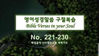 영어성경 말씀 230 구절복습 - 영어성경말씀 묵상과 …